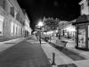 nocturna-pola9